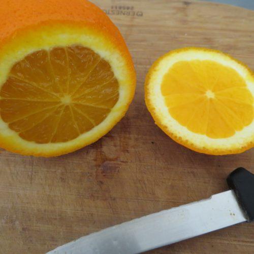 Coques d'oranges (9)